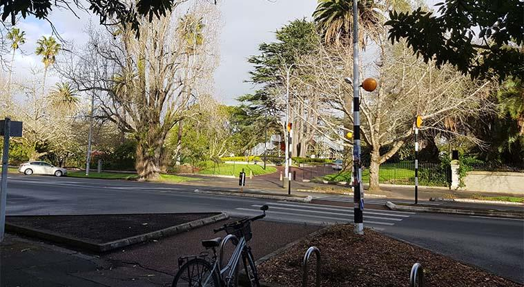 Albert Park - View from University of Auckland across Princes Street.