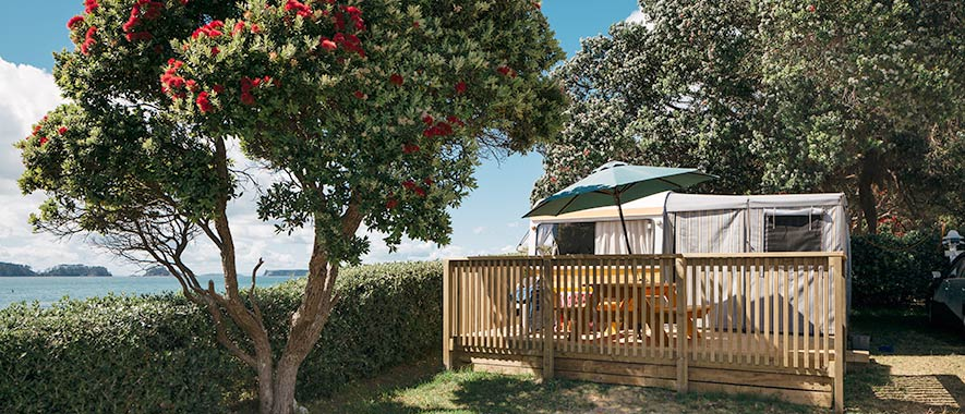 Holiday park room under a tree and next to the beach